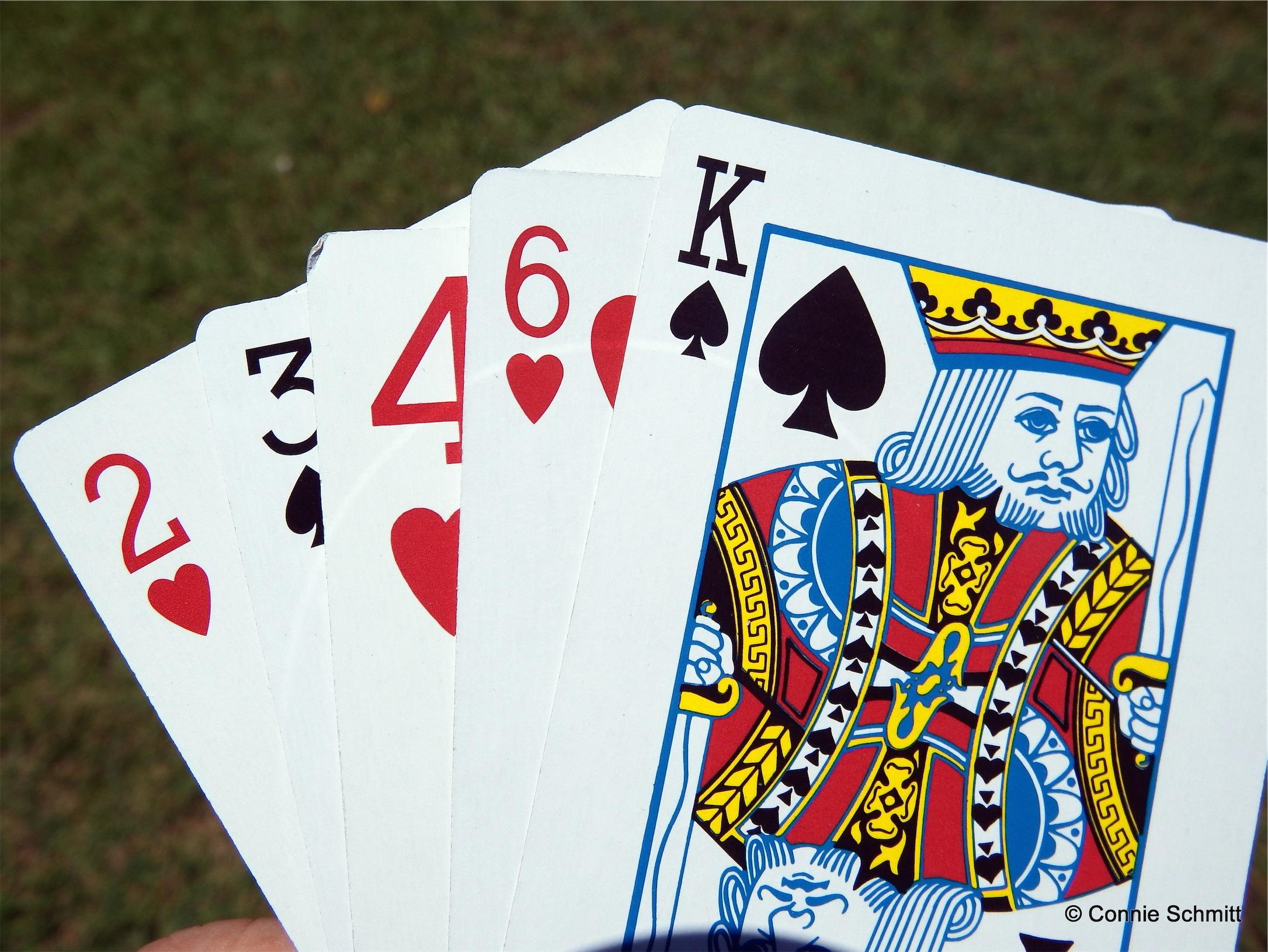 Poker run guidelines